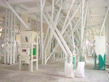 first floor of flour mill plant