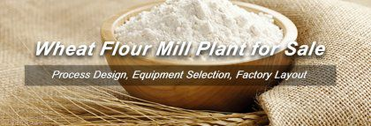 How Much Does it Cost to Setup A Wheat Flour Mill Plant?