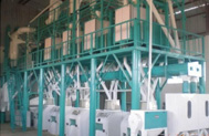 Development of Corn Flour Machine Improve People's Living